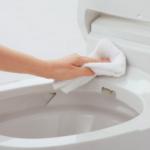節約しながら掃除!トイレ編 年末はキレイにして福を呼び込もう!