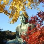紅葉の鎌倉で絶品ランチデート!見て食べて楽しもう♪