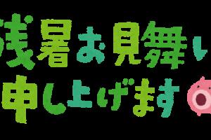 zansyoomimai_yoko