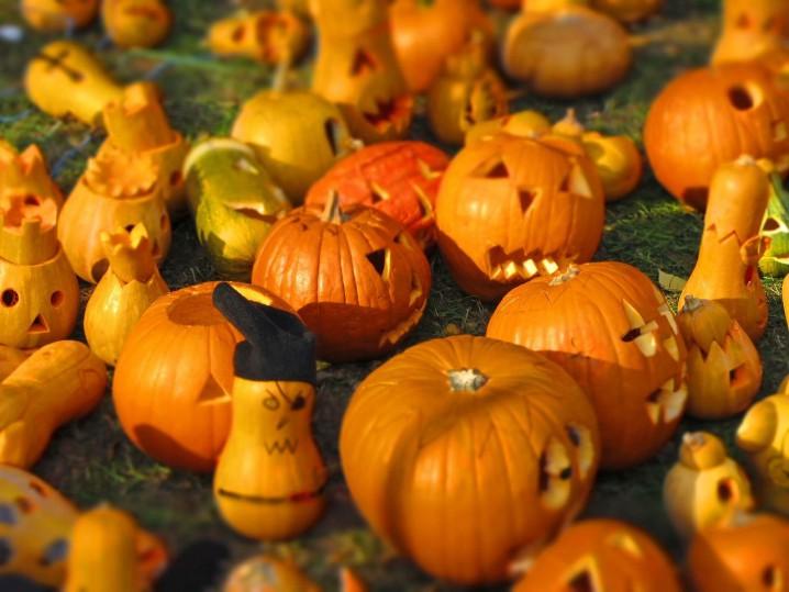 pumpkin-562409_1280_r